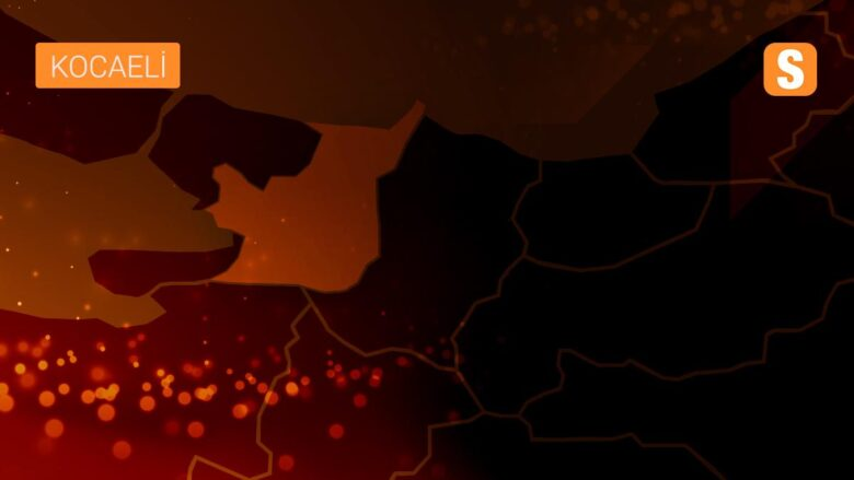 AB-Türkiye Yüksek Düzeyli İş Diyaloğunda Gümrük Birliği güncelleme ve Yeşil Mutabakat tartışıldı