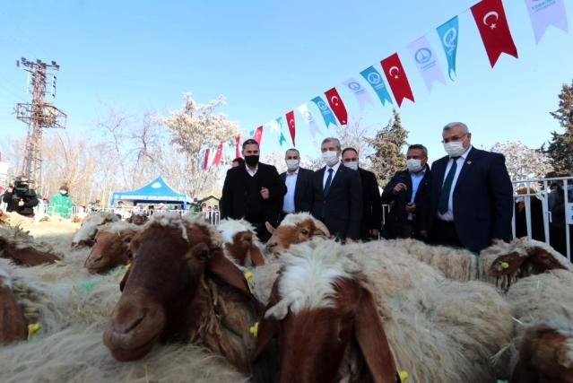 Şahinbey'de hayvan yetiştiricilerinin yüzü gülüyor